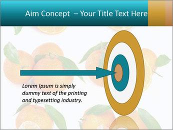 0000076237 PowerPoint Templates - Slide 83