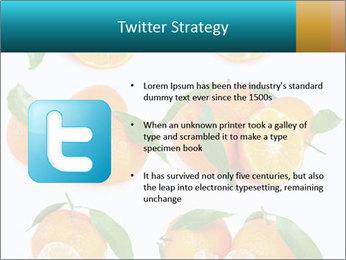 0000076237 PowerPoint Template - Slide 9