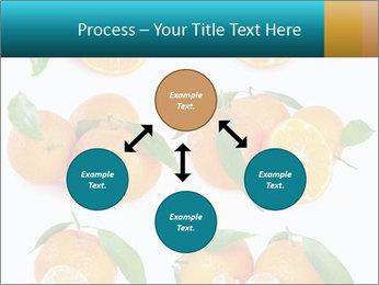 0000076237 PowerPoint Template - Slide 91
