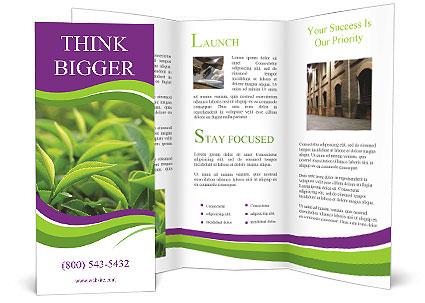 0000076245 Brochure Template