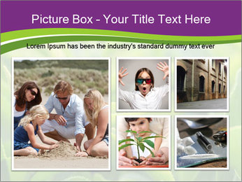0000076245 PowerPoint Template - Slide 19