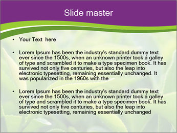 0000076245 PowerPoint Template - Slide 2