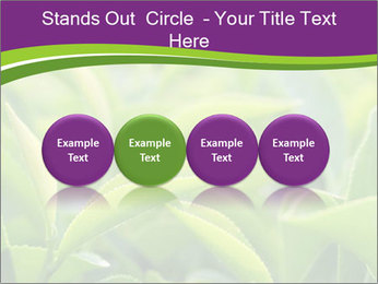 0000076245 PowerPoint Template - Slide 76