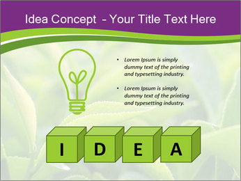 0000076245 PowerPoint Template - Slide 80