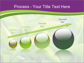 0000076245 PowerPoint Template - Slide 87