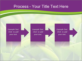 0000076245 PowerPoint Template - Slide 88