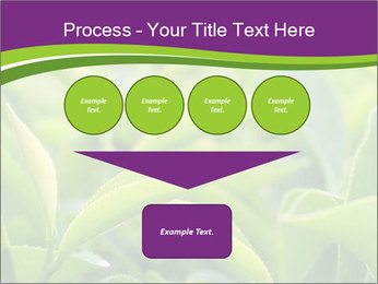 0000076245 PowerPoint Template - Slide 93