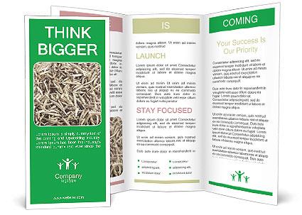 0000076246 Brochure Template