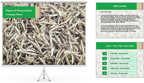 0000076246 PowerPoint Template
