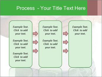 0000076249 PowerPoint Template - Slide 86