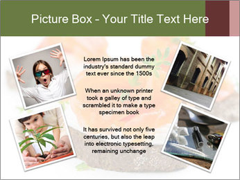 0000076255 PowerPoint Template - Slide 24