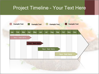 0000076255 PowerPoint Template - Slide 25