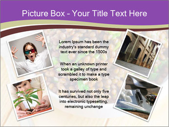 0000076283 PowerPoint Template - Slide 24