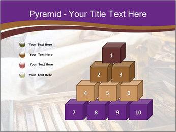 0000076297 PowerPoint Templates - Slide 31