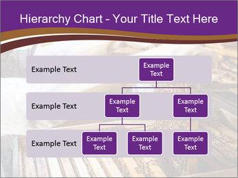 0000076297 PowerPoint Templates - Slide 67