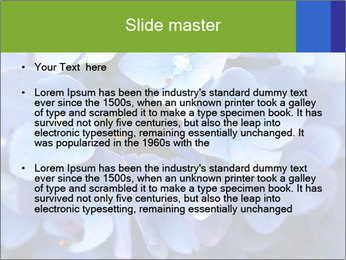 0000076299 PowerPoint Template - Slide 2