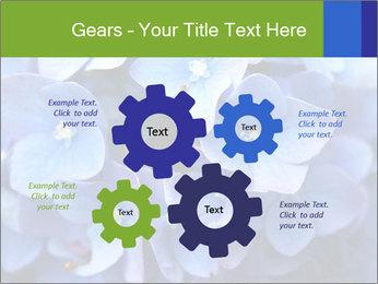 0000076299 PowerPoint Template - Slide 47