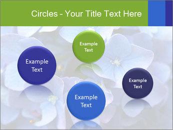 0000076299 PowerPoint Template - Slide 77