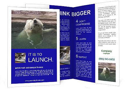 0000076305 Brochure Templates