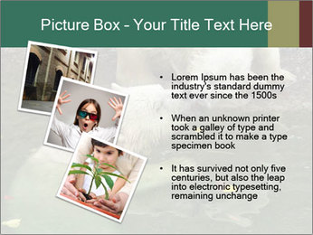0000076306 PowerPoint Template - Slide 17
