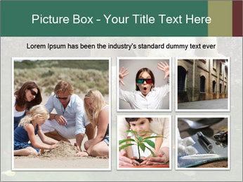 0000076306 PowerPoint Template - Slide 19