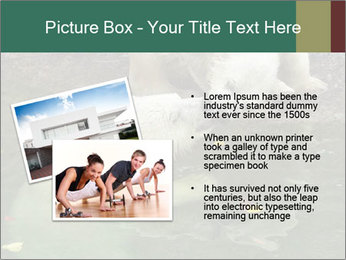 0000076306 PowerPoint Template - Slide 20