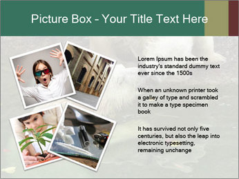 0000076306 PowerPoint Template - Slide 23