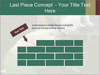 0000076306 PowerPoint Template - Slide 46