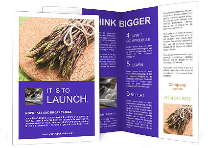 0000076318 Brochure Templates