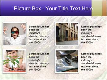 0000076318 PowerPoint Templates - Slide 14