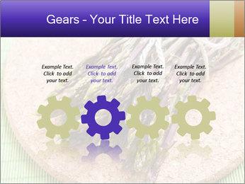 0000076318 PowerPoint Templates - Slide 48