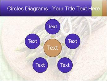 0000076318 PowerPoint Templates - Slide 78