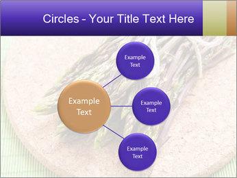 0000076318 PowerPoint Templates - Slide 79