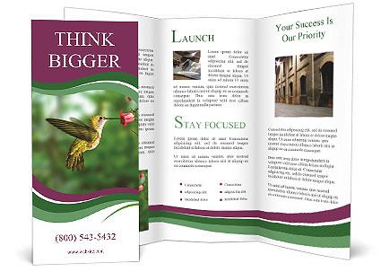 0000076332 Brochure Template