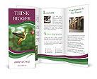 0000076332 Brochure Templates