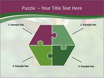 0000076332 PowerPoint Template - Slide 40