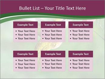0000076332 PowerPoint Template - Slide 56