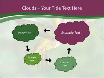 0000076332 PowerPoint Template - Slide 72