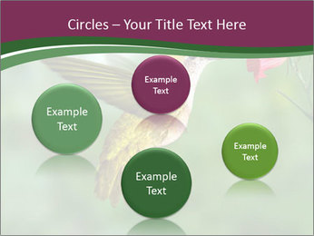 0000076332 PowerPoint Template - Slide 77
