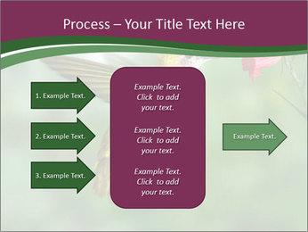 0000076332 PowerPoint Template - Slide 85