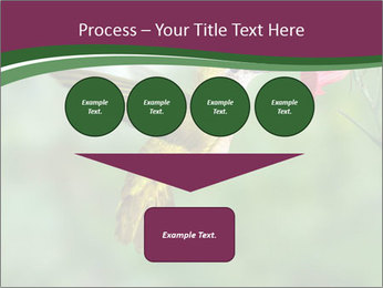 0000076332 PowerPoint Template - Slide 93