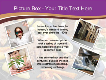 0000076336 PowerPoint Template - Slide 24