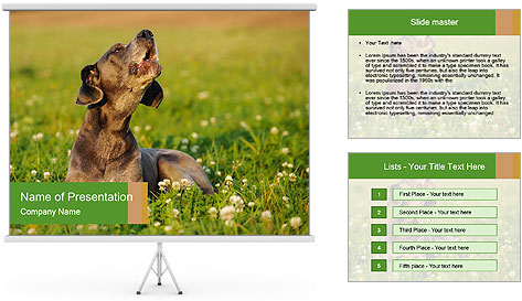 0000076354 PowerPoint Template