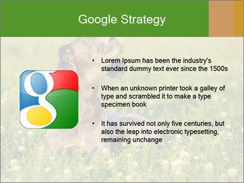 0000076354 PowerPoint Templates - Slide 10