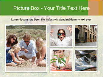 0000076354 PowerPoint Templates - Slide 19