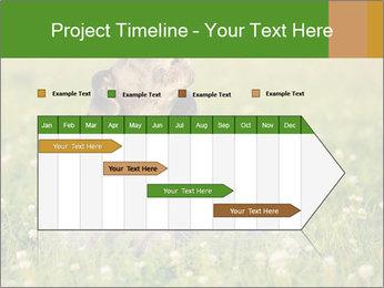 0000076354 PowerPoint Templates - Slide 25