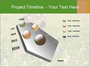 0000076354 PowerPoint Templates - Slide 26