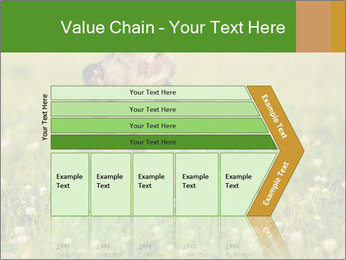 0000076354 PowerPoint Templates - Slide 27