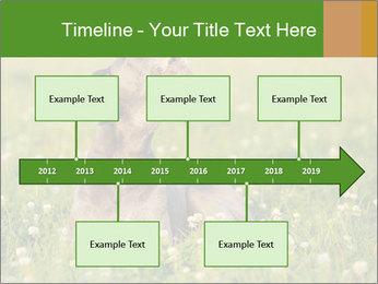 0000076354 PowerPoint Templates - Slide 28