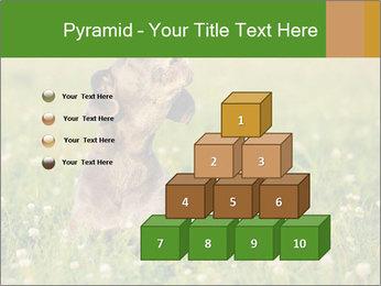 0000076354 PowerPoint Templates - Slide 31